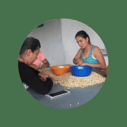 Café en grano Finca el Vergel Pereira Risaralda Colombia