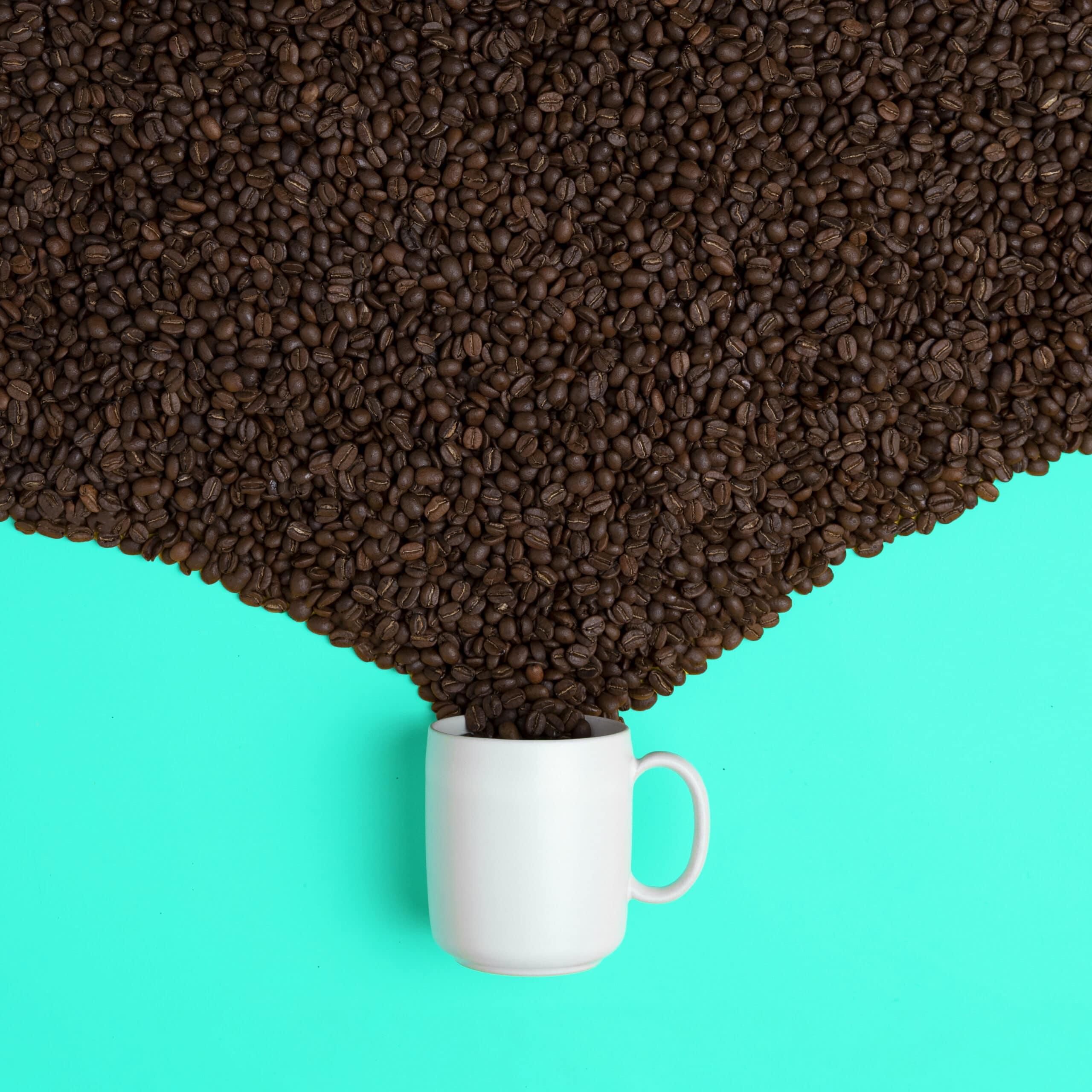 Granos de café-Incapto